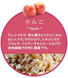 ドライフルーツ袋_りんご