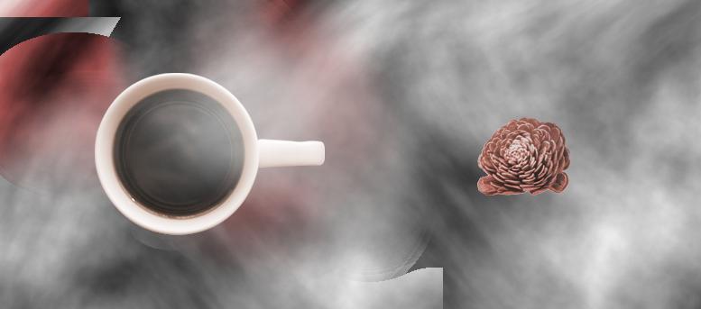 コーヒーと松毬