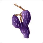 枝付きレーズン[アメリカ産]香りがとてもよく、優しい甘み