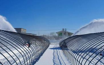 """""""北海道ならでは、雪深い農場"""""""