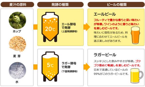エールビールとラガービール