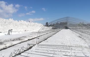 """""""この雪深い場所で雪干しほしいもは作られています"""""""